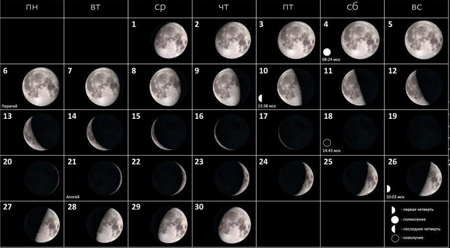 Фазы Луны в ноябре 2017 года.