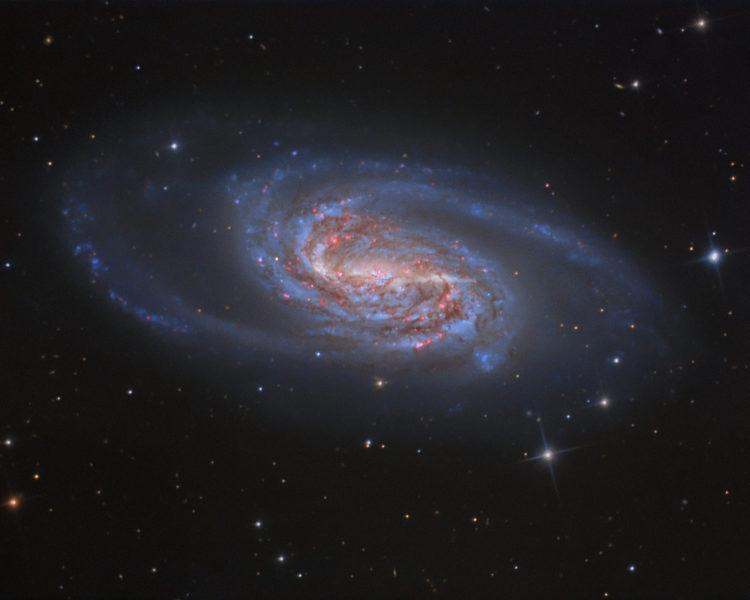 Галактика NGC 2903