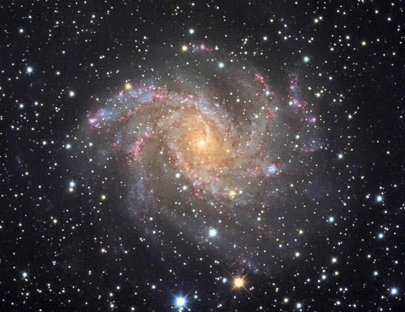 Галактика NGC 6946 - Фейерверк