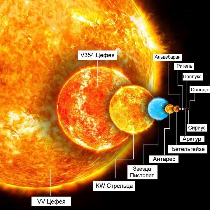 Сравнение размеров Солнца и различных более крупных звезд с VV Цефея.