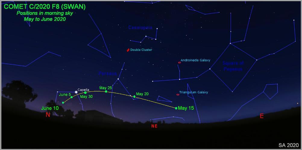 Путь кометы C/2020 F8 (SWAN), на небе в мае 2020.